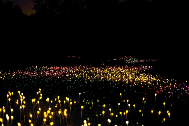 Field of Light: The star of the show—comprised of 20,000 lighted glass spheres and gracing the grounds in front of Cheekwood's mansion—this installation must be seen in person.