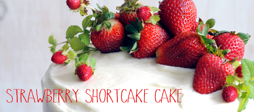 StrawberryShortcakeCakeCarousel